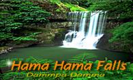 Hama Hama Falls logo