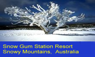 Snow Gum Station Resort logo