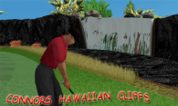Connors Hawaiian Cliffs 2004 logo