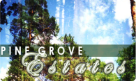 Pine Grove Estates 2004 logo