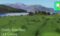 Gaelic Raw Field Link Course logo