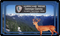Hurricane Ridge logo