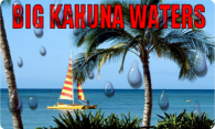 Big Kahuna Waters logo
