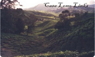 Casa Lomo Links logo