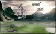 Druid Hills logo