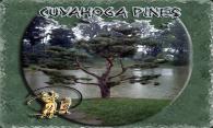 Cuyahoga Pines logo