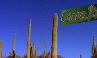 Cactus Ranch logo