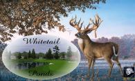 Whitetail Ponds logo