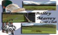 Balley Marrey 2006 logo