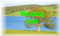 Watering Hole logo
