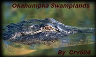 Okahumpka Swamplands logo