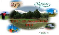 TPC at Avondale (South) 2006 logo