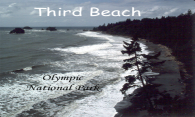 Olympic Coast - Third Beach logo