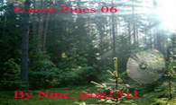 Forest Pines 06 logo
