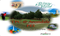 TPC at Avondale (South) 2007 logo