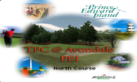 TPC at Avondale (North) 2007 logo
