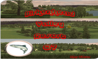 Birkenhead Valley 07 logo