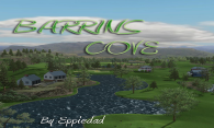 Barrins Cove 07 logo