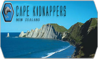 Cape Kidnappers 08 logo