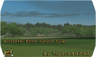 Atlantic Elite Gold Cup logo