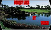 Desert  Lake 2008 logo