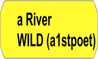 A River Wild logo