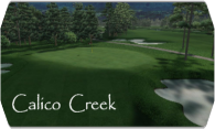 Calico Creek 2008 logo