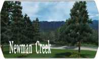 Newman Creek 2008 logo