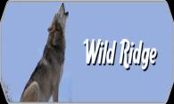Wild Ridge logo