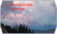Pine Barrons logo
