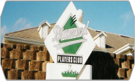 Diamond Players Club 08 logo