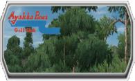 Myakka Pines GC logo
