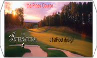 The Pines at International logo