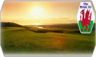 The Welsh Golf Club 09 logo