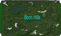 Borin Hills logo