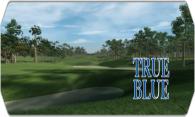 True Blue 2009 logo