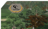 Cape Cod GC logo