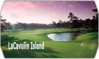 LaCavulin Island 2010 logo