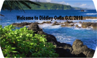 Diddley Oofla G.C. 2010 logo