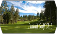 Pintail Golf Club logo