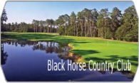 Black Horse Country Club logo