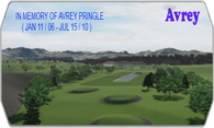 Avrey ( In Memory of Avrey Pringle ) logo