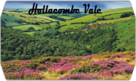 Hollacombe Vale logo