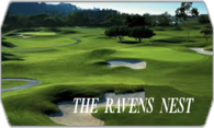 The Ravens Nest logo