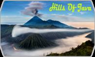 Hills of Java logo
