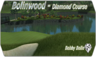 Bolinwood - Diamond Course 08 logo