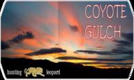 Coyote Gulch logo