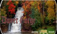 Dwyer Gorge logo