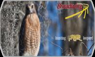 Broadwing logo