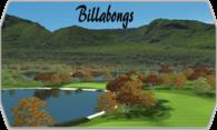 Billabongs logo